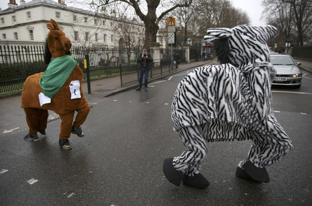 Participants wear costume as they cross the road during the annual London Pantomime Horse Race in Greenwich, Britain December 13, 2015. (Photo by Neil Hall/Reuters)