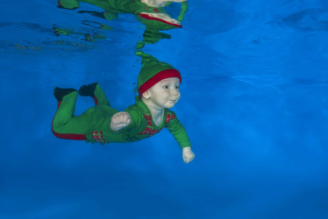 Infant in Christmas suit posing underwater in the pool on December 15, 2016 in Odessa, Ukraine. (Photo by Andrey Nekrasov/Barcroft Images)