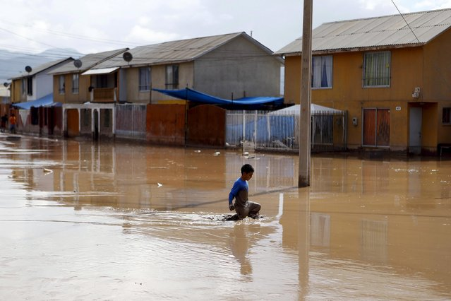 A child walks through a flooded street at Copiapo city, March 26, 2015. (Photo by Ivan Alvarado/Reuters)