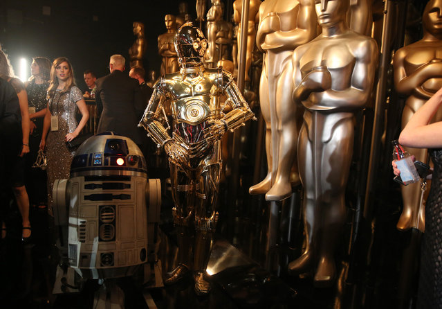R2-D2, left, and C-3PO pose backstage at the Oscars on Sunday, February 28, 2016, at the Dolby Theatre in Los Angeles. (Photo by Matt Sayles/Invision/AP Photo)