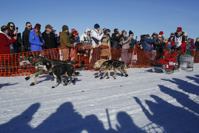 Aliz Zirkle'st team races out of the start chute at the restart of the Iditarod Trail Sled Dog Race in Willow, Alaska March 6, 2016. (Photo by Nathaniel Wilder/Reuters)