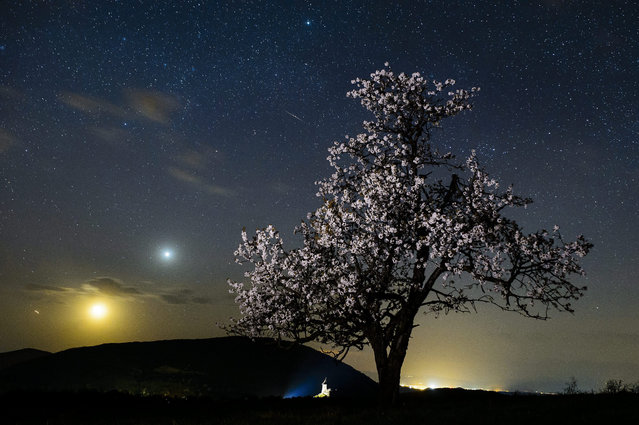 A meteorite burns up in the atmosphere as seen in this photo taken near of Salgotarjan, 109 kms northeast of Budapest, Hungary, late 21 April 2015. The Moon and Venus can be seen on the left. (Photo by Peter Komka/EPA)