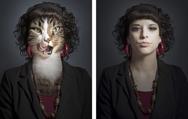 Undercats By Sebastian Magnani