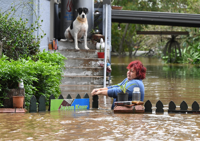 A woman attempts to access her home as her dog looks on in central Lismore, New South Wales, Australia, 31 March 2017. The Wilsons River breached its banks early this morning, flooding the far-northern New South Wales town. (Photo by Dave Hunt/EPA)