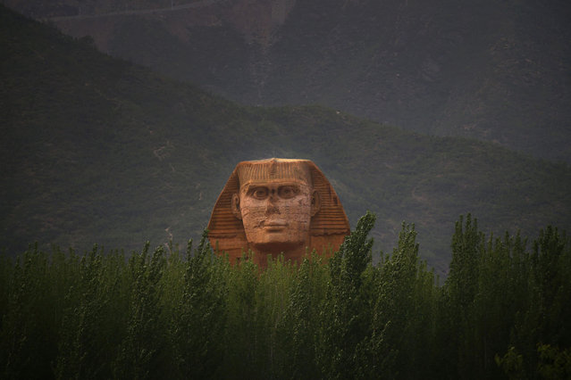 The head of a full-scale replica of the Sphinx, which is part of an unfinished theme park that will also accommodate the production of movies, television shows and animation, is seen behind trees on the outskirts of Shijiazhuang, Hebei province May 15, 2014. The replica is a venue of a film studio which is already functioning. The theme park is scheduled to open this October, local media reported. (Photo by Petar Kujundzic/Reuters)