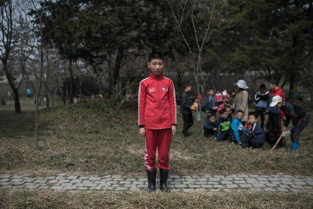 "In a photo taken on April 7, 2017 Kim Hyun-U (12) poses for a portrait as he takes part in a seasonal initiative referred to as a ""do good things"" campaign, in which residents are encouraged to sweep and tidy the city, in a park in Pyongyang. (Photo by Ed Jones/AFP Photo)"