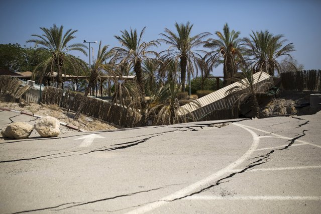 Palm trees that collapsed into a sinkhole are seen at an abandoned tourist resort on the shore of the Dead Sea, Israel July 28, 2015. (Photo by Amir Cohen/Reuters)