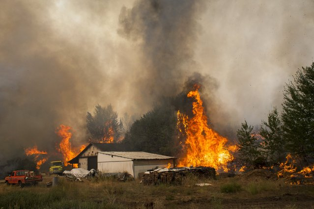 Flames begin to consume structures during the Twisp River fire near Twisp, Washington August 20, 2015. (Photo by David Ryder/Reuters)