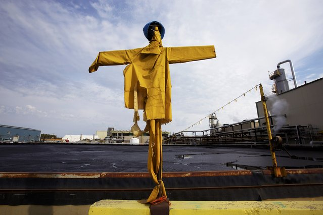 Scarecrow dressed up on sticks to keep birds away from landing on oil ponds at the McKay River Suncor oil sands in-situ operations near Fort McMurray, Alberta, September 17, 2014. (Photo by Todd Korol/Reuters)