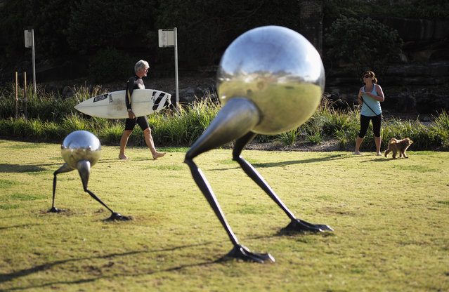 A local surfer walks past a sculpture at Tamarama Beach October 23, 2014. (Photo by Jason Reed/Reuters)