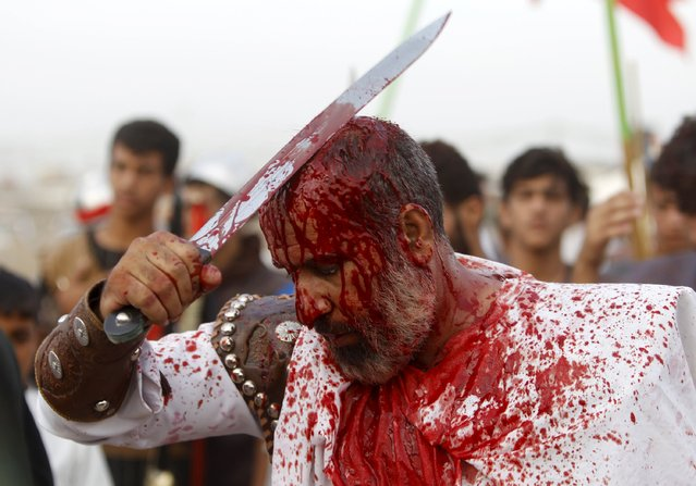 Iraq Shi'ite Muslim men bleed as they gash their foreheads with swords and beat themselves to commemorate Ashura in Sadr City, Baghdad, October 24, 2015. (Photo by Ahmed Saad/Reuters)