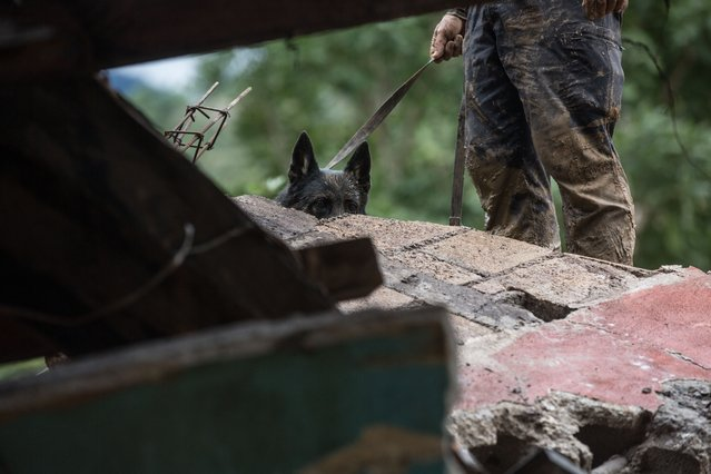 A rescue dog and his handler search for survivors amid the destruction caused by a massive, rain-fueled landslide in the village of Queja, in Guatemala, Saturday, November 7, 2020, in the aftermath of Tropical Storm Eta. (Photo by Esteban Biba/Pool Photo via AP Photo)