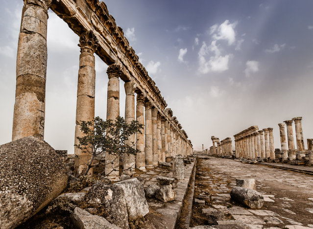 "Winner: Where History Happened, Palmyra, Syria. ""This image was taken before the civil war in Syria at the ancient city of Apamea. I'd dragged my family out of bed early, when it was cold and dark, to ensure we were at the Great Colonnade early enough to catch sunrise and the golden hour. I'd got my timings wrong and we were an hour early so sat around wondering where the sun had gone and waiting for dawn. It was worth the wait. I felt privileged at the time to have the opportunity to visit Apamea, but even more so since the civil war damaged some of these most impressive monuments"". (Photo by Martin Chamberlain/Historic Photographer of the Year 2020)"