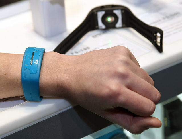 Epson's Pulsense PS-100 fitness bands are shown at the 2015 International CES at the Sands Expo and Convention Center on January 6, 2015 in Las Vegas, Nevada. The USD 130 device records heart rate, steps, calories burned and sleep information and gives real-time data on a user's smartphone. (Photo by Ethan Miller/Getty Images)