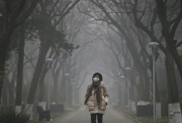 A woman wearing a mask walks as smog covers China's capital Beijing on an extremely polluted day, December 1, 2015. (Photo by Jason Lee/Reuters)