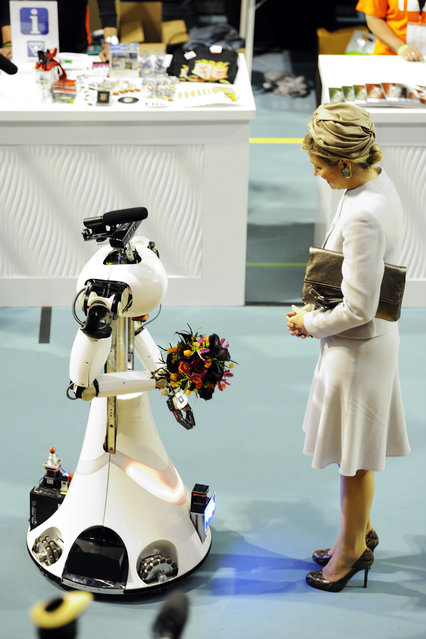 Her majesty Máxima, Queen of the Netherlands, receives flowers from AMIGO, the Eindhoven Tech United servicerobot from RoboCup@Home, at RoboCup 2013 in Eindhoven (NL). (Photo by Bart van Overbeeke)