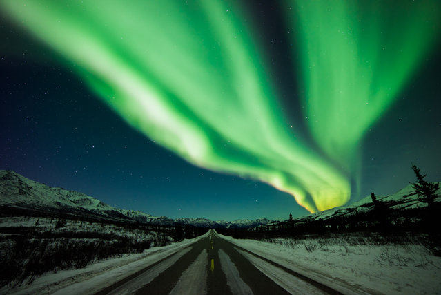 The Northern Lights, Denali National Park. (Photo by Caters News)