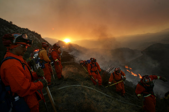 Hand crews work to put out hot spots that burn along  Highway 74 in the Cleveland National Forest as the Falls Fire swept through the area on Monday, August 5, 2013. (Photo by Stan Lim/AP Photo/The Press-Enterprise)