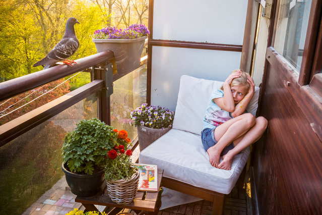 """Nature – first prize, stories. Pandemic Pigeons – A Love Story. The photographer's daughter, Merel, cowers after Dollie flies past and perches on the balcony before entering the house in Vlaardingen in the Netherlands on 6 April 2020. """"She's still frightened when Dollie suddenly lands on the balcony railing. I hide my smile behind the camera, as I try to comfort her by saying they won't hurt you. """"I thought he was going to attack me"""", she replies. As the nesting pigeons keep coming back to our place, slowly my girls have started to appreciate them – perhaps not as much as I do, but it's a start"""". (Photo by Jasper Doest/World Press Photo 2021)"""