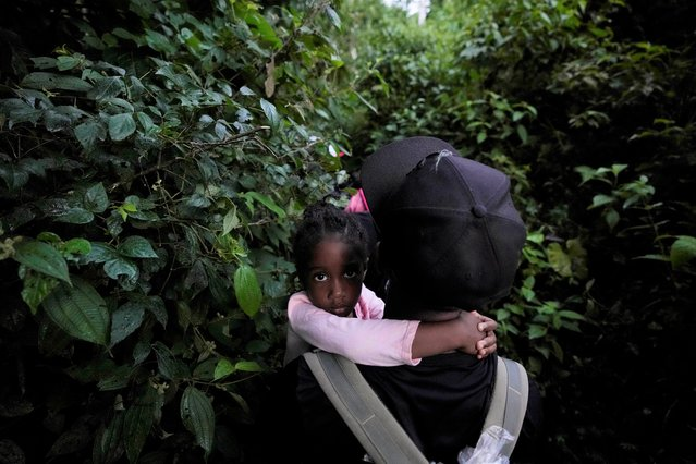 Migrants continue on their trek north, near Acandi, Colombia, Wednesday, September 15, 2021. The migrants, mostly Haitians, are on their way to crossing the Darien Gap from Colombia into Panama dreaming of reaching the U.S. (Photo by Fernando Vergara/AP Photo)
