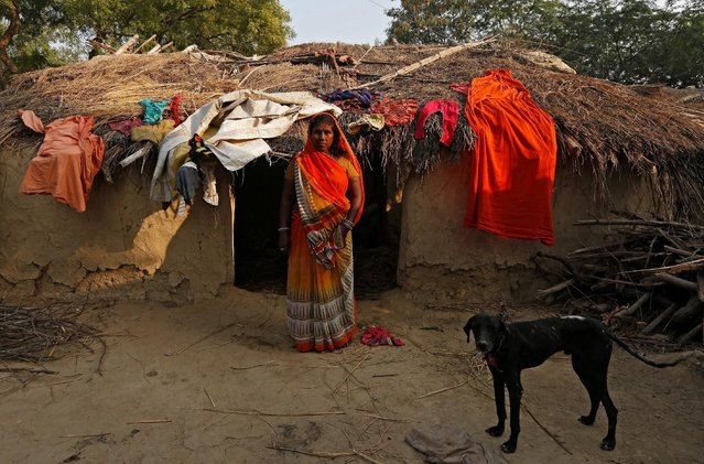 A wife of a snake charmer stands outside her house in Jogi Dera (snake charmers settlement), in the village of Baghpur, in the central state of Uttar Pradesh, India November 9, 2016. (Photo by Adnan Abidi/Reuters)