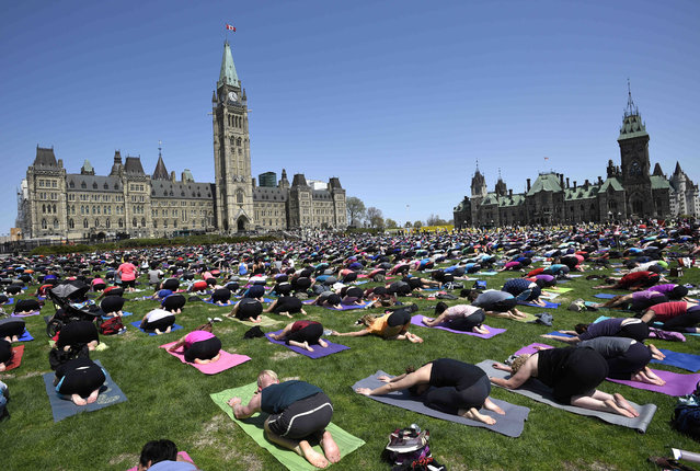 People take part in a yoga session on Parliament Hill in Ottawa on Wednesday, May 6, 2015. Every week in May free Yoga classes are offered featuring different yoga instructors in Ottawa. (Photo by Justin Tang/AP Photo/The Canadian Press)