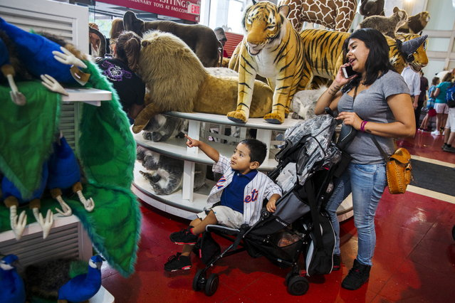 A young boy reacts to stuffed animals July 15, 2015. Since 2009 FAO Schwarz has been owned by Toys R Us, which has several stores in New York City, including a flagship store in Times Square. (Photo by Lucas Jackson/Reuters)
