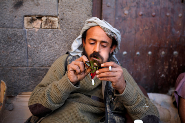A man rests as he smokes and chew Qat, a stimulant, in the old market in the historic city of Sanaa, Yemen, January 8, 2017. (Photo by Mohamed al-Sayaghi/Reuters)