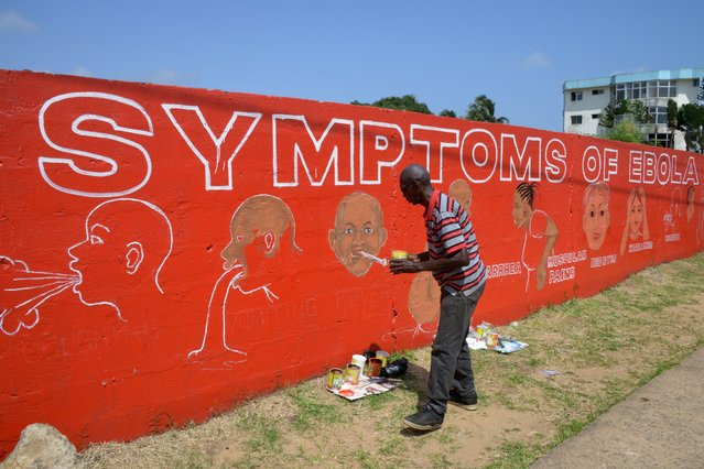 A street artist, Stephen Doe, paints an educational mural to inform people about the symptoms of the deadly Ebola virus in the Liberian capital Monrovia, on September  8, 2014. More than 22 million people live in parts of Africa where conditions exist for the Ebola virus to jump from animals to humans, a bigger area than previously thought, researchers said. (Photo by Dominique Faget/AFP Photo)