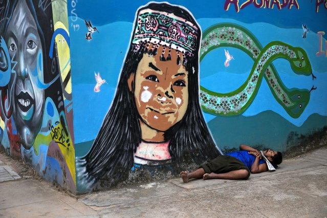 A homeless man sleeps against a wall adorned with a mural featuring a Shipibo Indigenous girl and Amazon rainforest animals, in Pucallpa, in Peru's Ucayali region, Wednesday, September 2, 2020. Peru is home to one of Latin America's largest Indigenous populations, whose ancestors lived in the Andean country before the arrival of Spanish colonists. (Photo by Rodrigo Abd/AP Photo)