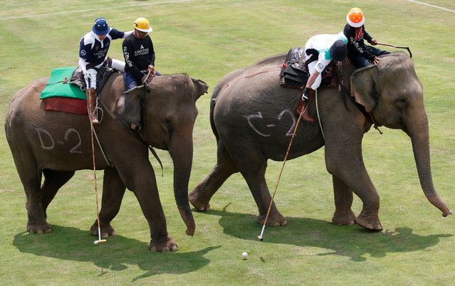 Elephant polo players of INVNT team (R) competes with JW Blue Label team (L) during the King's Cup Elephant Polo Tournament 2018 in Bangkok, Thailand, 08 March 2018. A total of 20 unemployed former street elephants took part in the sixteenth edition of the annually charity tournament held to raise funds to be donated for projects aiding the protect the wild and domesticated elephant population in Thailand. (Photo by Rungroj Yongrit/EPA/EFE)