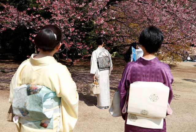 Kimono-clad women look at early flowering Kanzakura cherry blossoms in full bloom at the Shinjuku Gyoen National Garden in Tokyo, Japan March 14, 2018. (Photo by Issei Kato/Reuters)
