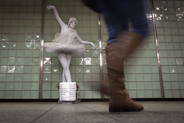 Living statue ballerina Therisa Barber-Shaw performs for tips in the Times Square subway station in the Manhattan borough of New York January 16, 2015. (Photo by Carlo Allegri/Reuters)