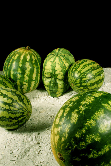 """Melon"". (Photo by Johannes Stötter)"