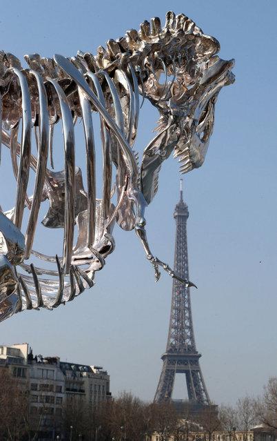 Chrome T-Rex Sculpture In Paris By Philippe Pasqua