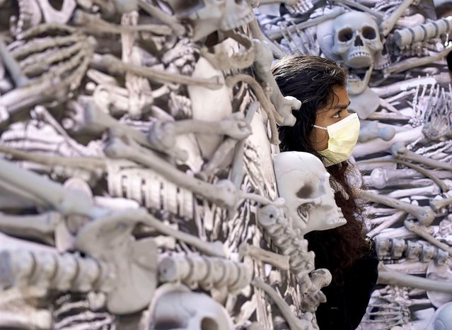 Volunteer Ammu Dinesh, of Belmont, Mass., looks out from a bone sculpture before carrying it to the home of Moderna CEO Stephane Bancel to demand global vaccine equity on Wednesday, September 29, 2021 in Boston. (Photo by Mary Schwalm/AP Images for PrEP4All)