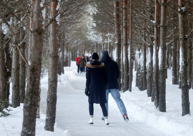 People skate through the forest at Domaine de la Foret Perdu or the Lost Forest, a 15km weaving and zambonied forest trail made for skating in Notre-Dame-du-Mont-Carmel, near Three Rivers, Quebec January 29, 2017. (Photo by Christinne Muschi/Reuters)