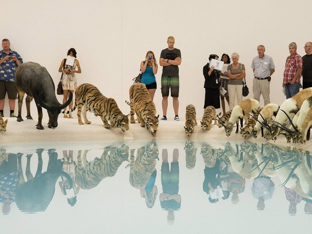 """Visitors enjoy """"Falling Back To Earth"""" exhibition created by Chinese artist Cai Guo Qiang at the Gallery of Modern Art (GOMA) in Brisbane. (Photo by Dave Hunt/EPA)"""