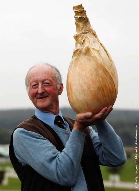 Gardener Peter Glazebrook poses for photographers with his world record breaking onion