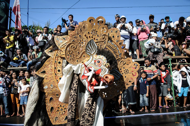 """A sacred Barong Bangkung dances during the Kissing Festival known as """"Omed-Omedan"""" at Sesetan village on April 1, 2014 in Denpasar, Bali, Indonesia. (Photo by Agung Parameswara/Getty Images)"""