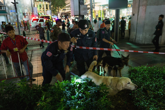 Policemen check with sniffer dogs at the scene of an explosion on August 17, 2015 in Bangkok, Thailand. A large explosion believed to a bomb has hit central Bangkok this evening with early reports suggesting at least 16 people have died and scores more have been injured. (Photo by Nicolas Axelrod/Getty Images)