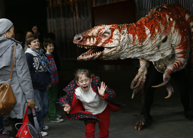 Children react as a carnivorous theropod known as the Australovenator dinosaur walks through crowds along the Southbank, in London, Monday, February 18, 2013. The dinosaur is one of many that can be visited at the Erth's Dinosaur Petting Zoo, visiting from Australia, the creatures can be touched and fed at the Southbank Centre. (Photo by Kirsty Wigglesworth/AP Photo)