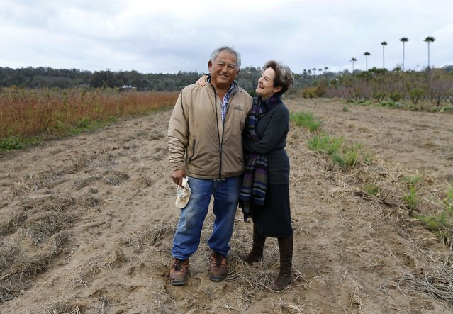 Farmer Tom Chino (L) poses for a photograph with chef, author and restaurateur Alice Waters, at his family's farm in  Rancho Santa Fe, California December 7, 2013. (Photo by Mike Blake/Reuters)