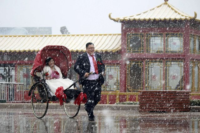 A man pulls a rickshaw carrying his wife during their wedding ceremony as snow falls in Weihai, China, on March 30, 2013. (Photo by Reuters)