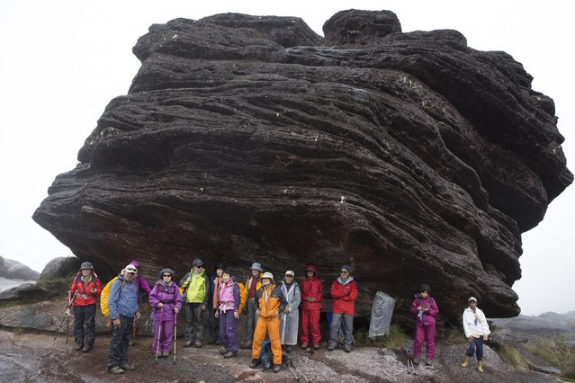 Japanese tourists take shelter from the rain next to a rock formation on top of Roraima Mount, near Venezuela's border with Brazil January 17, 2015. (Photo by Carlos Garcia Rawlins/Reuters)