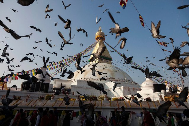 Pigeons flying in front of Boudhanath stupa during the opening ceremony of the stupa in Kathmandu, Nepal, November 22, 2016. The stupa which was sustained damage in the earthquake in 2015, is formally opening after the reconstruction is completed. (Photo by Hemanta Shrestha/EPA)
