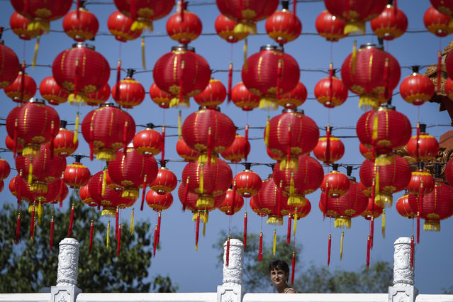 A visitor walks by traditional Chinese lantern decorations at a temple ahead of the Chinese Lunar New Year in Kuala Lumpur, Malaysia, on Tuesday, February 17, 2015. (Photo by Joshua Paul/AP Photo)
