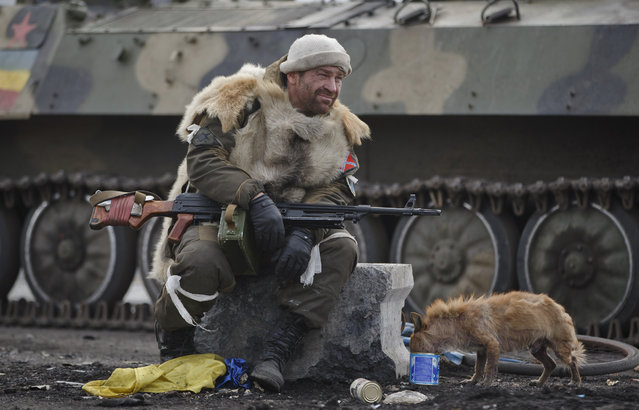 A Russia-backed rebel rests as a dog eats from a can in Debaltseve, Ukraine, Friday, February 20, 2015. After weeks of relentless fighting, the embattled Ukrainian rail hub of Debaltseve fell Wednesday to Russia-backed separatists, who hoisted a flag in triumph over the town. (Photo by Vadim Ghirda/AP Photo)