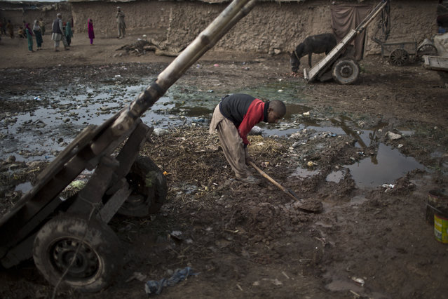 An Afghan refugee youth uses a shovel to create a sewage path near his mud home in a slum on the outskirts of Islamabad, Pakistan, Saturday, February 21, 2015. (Photo by Muhammed Muheisen/AP Photo)