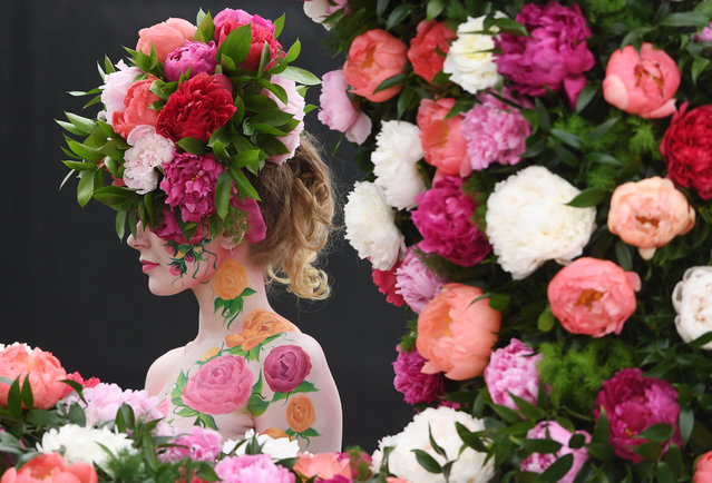 A model poses for photographers next to a floral display during the press day for the RHS Chelsea Flower Show in London, Britain, 20 May 2019. The RHS Chelsea Flower Show is a garden show held for five days by the Royal Horticultural Society in the grounds of the Royal Hospital Chelsea. It has been held since 1912 and runs this year from 21 May to 25 May. (Photo by Facundo Arrizabalaga/EPA/EFE)